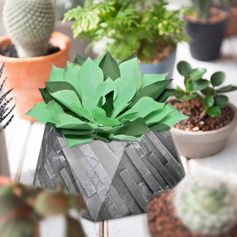 Kaktus basteln URSUS