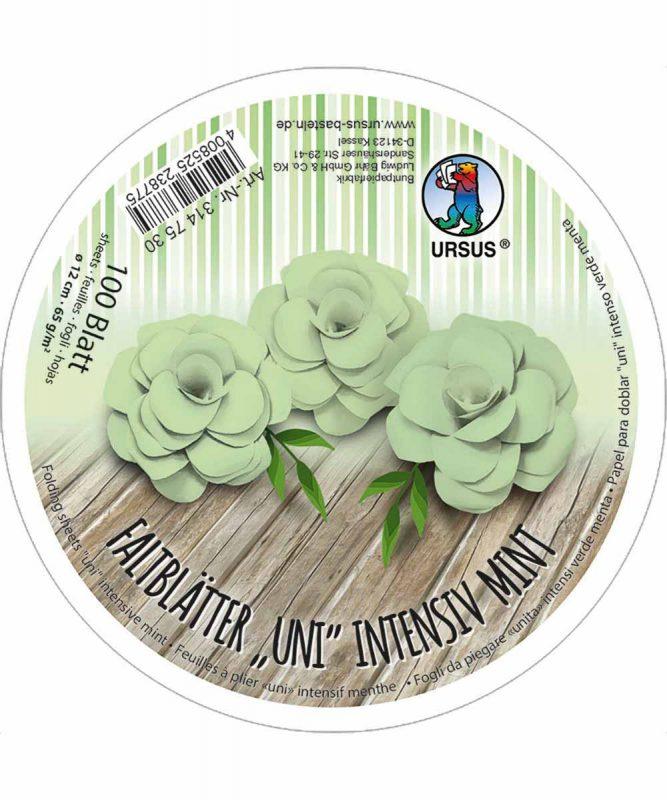 3147530 URSUS Faltblätter Uni Intensiv Mint
