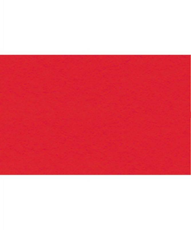 Fotokarton 300g/m² DIN A4 50 Blatt TULPENROT Artikel Nr.: 3774621