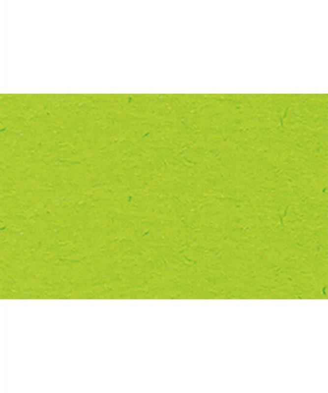 Fotokarton 300g/m² DIN A4 50 Blatt HELLGRÜN Artikel Nr.: 3774651
