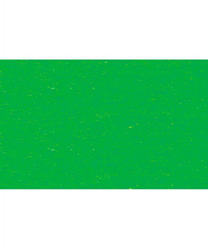 Fotokarton 300g/m² DIN A4 50 Blatt GRASGRÜN Artikel Nr.: 3774658