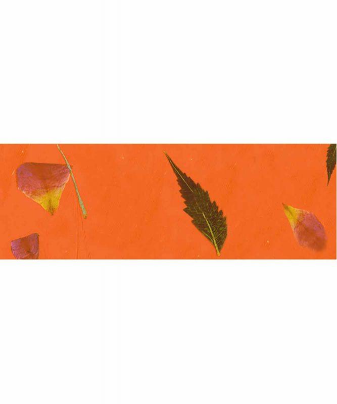 Blütenpapier farbig Handgeschöpftes Naturpapier, 80 g/m² 50 x 70 cm Art.-Nr.: 14132205 grün
