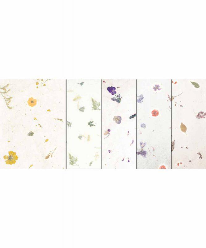 Botanica Naturpapier mit Blätter- und Blüteneinschlüssen, 35 g/m² 23 x 33 cm, 5 Blatt sortiert in 5 Designs Art.-Nr.: 14560099 50 x 70 cm, 10 Bogen sortiert in 5 Designs Art.-Nr.: 14582299